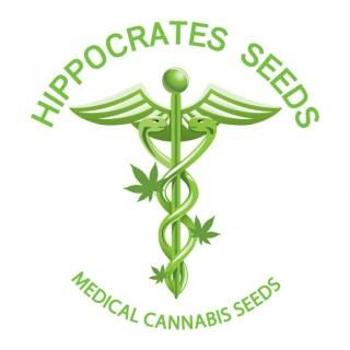 Hippocrates Seeds | Medical Cannabis Seeds